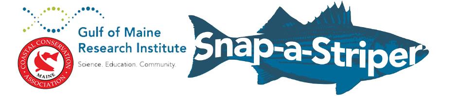 snapastriper_cca_gmri_Logo_2